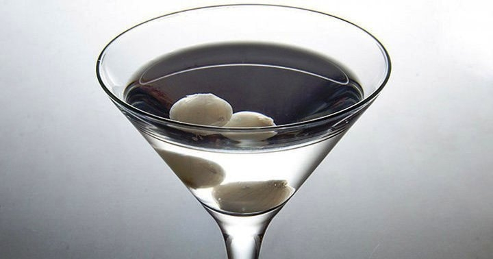 Gibson Cocktail  Martini