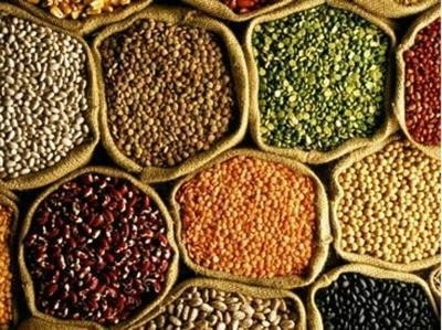 Purchase of gram, masoor, mustard will be on MSP