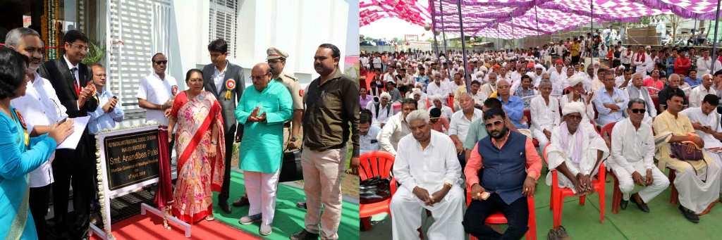Teachers should present ideals for students: Governor Smt. Patel