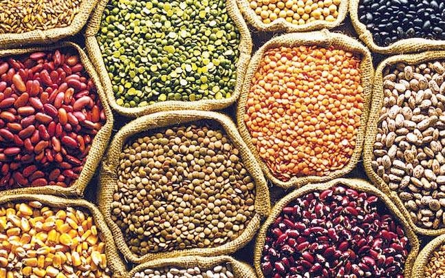 Purchase of over 10 lakh metric ton pulses in state