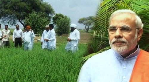 किसानों के लिए मोदी सरकार ने खोला पिटारा, खरीफ फसलों के न्यूनतम समर्थन मूल्य में भारी वृद्धि