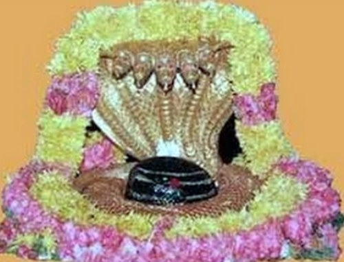 जानें वृषभ राशि के लोगों के लिए कौन से ज्योतिर्लिंग की पूजा करना चाहिए ?