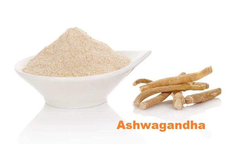 """""""Ashwagandha"""":  Panacea for Physical wellness in ayurveda"""