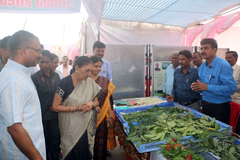Farmers should undertake animal husbandry with agriculture to enhance income: Governor Smt. Patel