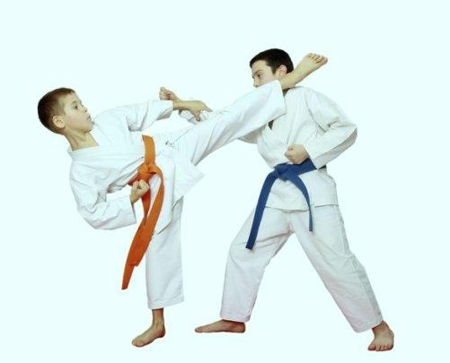क्या आप जानते हैं जूडो और कराटे के बीच अंतर ?