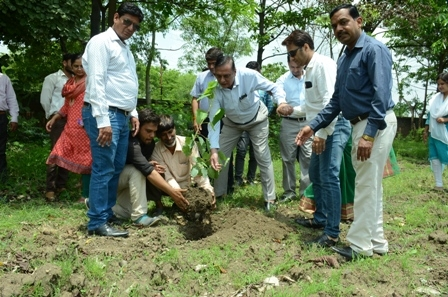 Peepal plantation program in People's University on the auspicious occasion of Guru Purnima
