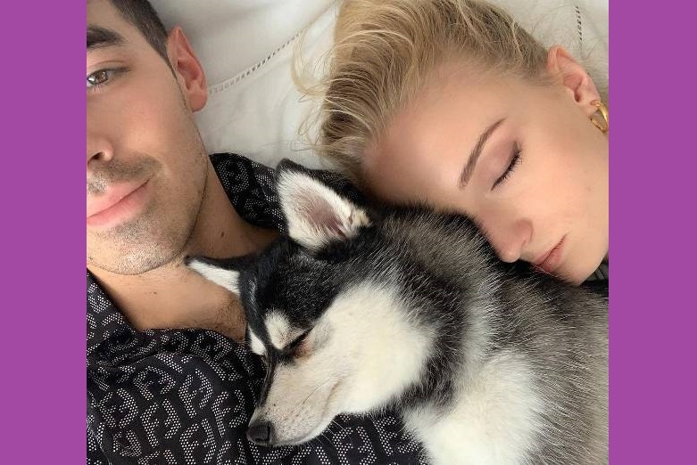 An accident puts newlyweds Joe Jonas and Sophie Turner into trauma