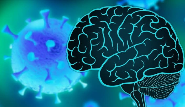 The apprehension of the brain related diseases even after recovery from Coronavirus