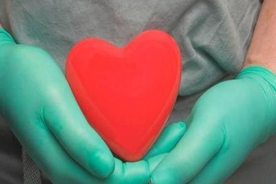 Ghaziabad woman s heart, other organs give life to four
