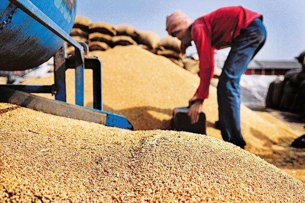 Production of food grain a record 273.38 mn tonnes: Agriculture Ministry