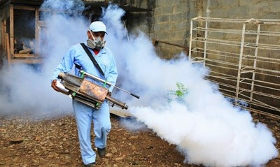 Sri Lanka warns of dengue epidemic