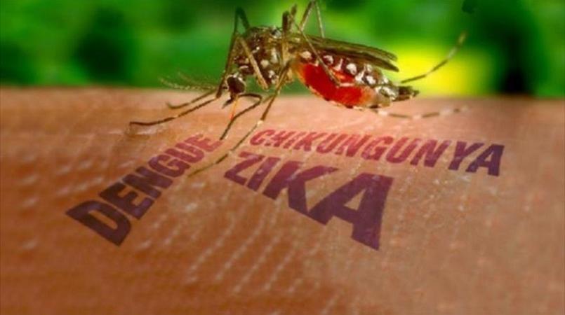 Climate change may spur diseases like zika, malaria, dengue
