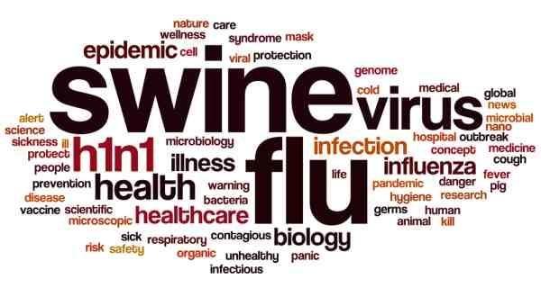 Swine flu: Prevention, precautions and treatment